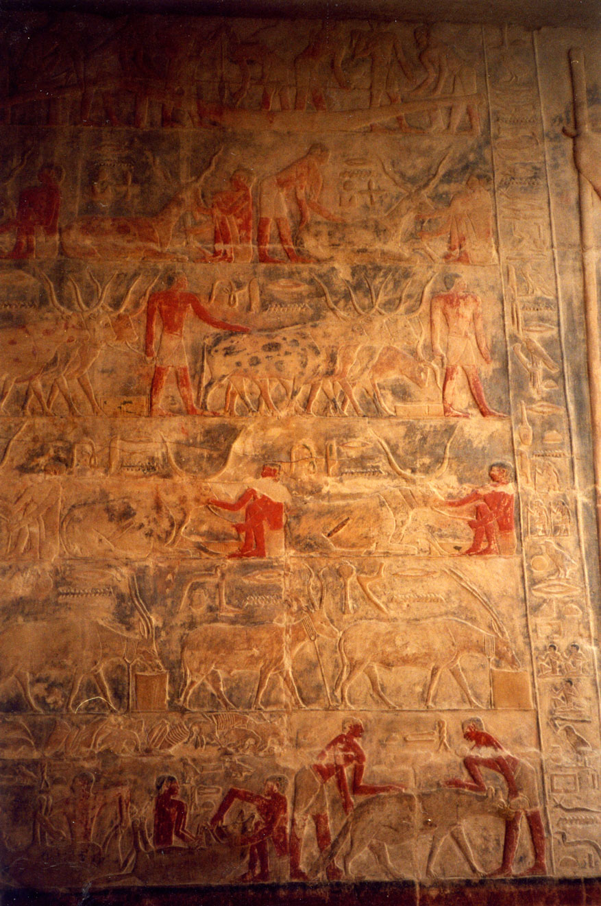 Mezar içerisindeki duvar resimlerinin bir örneği