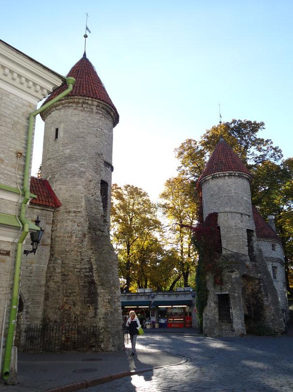 Eski Şehrin nizamiyesi Viru Kapısı