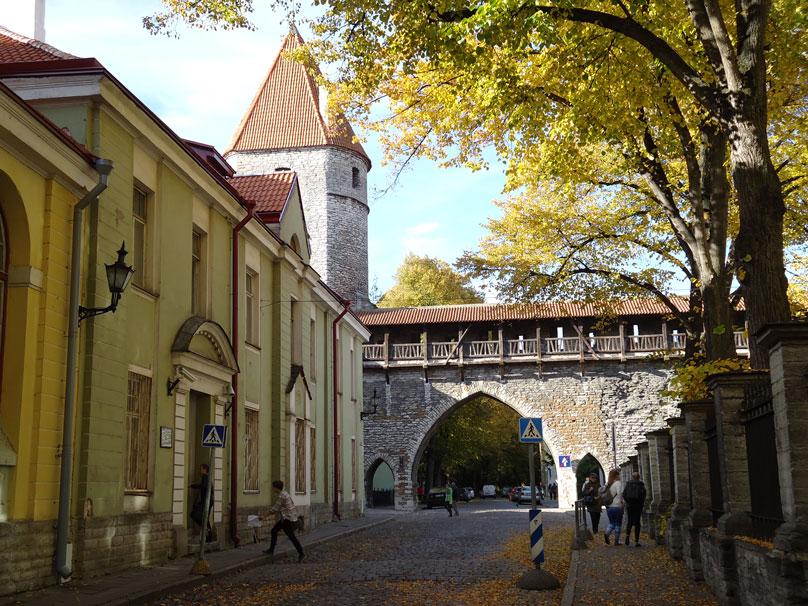 Tallin'in şehir surlarındaki geçitlerden biri