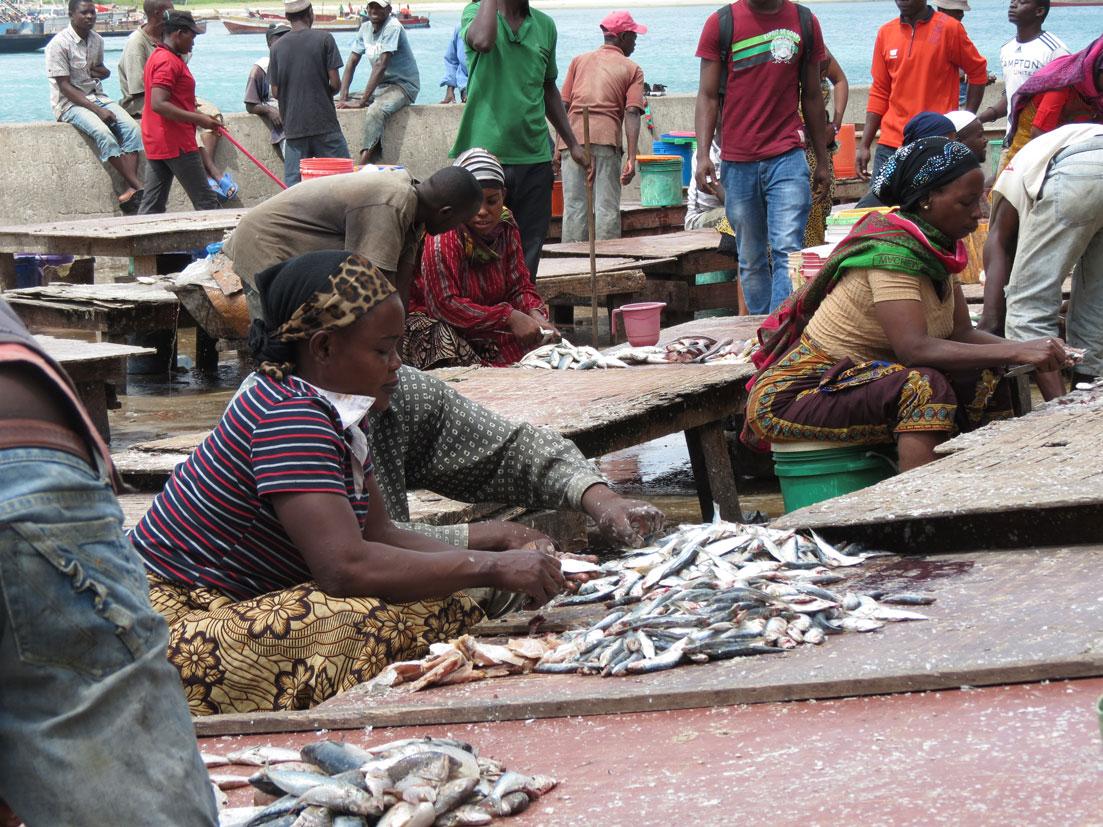 Darüsselam Balık Pazarı'nda yoğun mesai