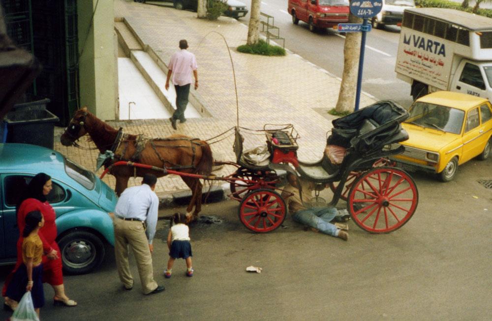 Faytonunu tamir eden şahıs, atının adım atmayacağından çok emin…