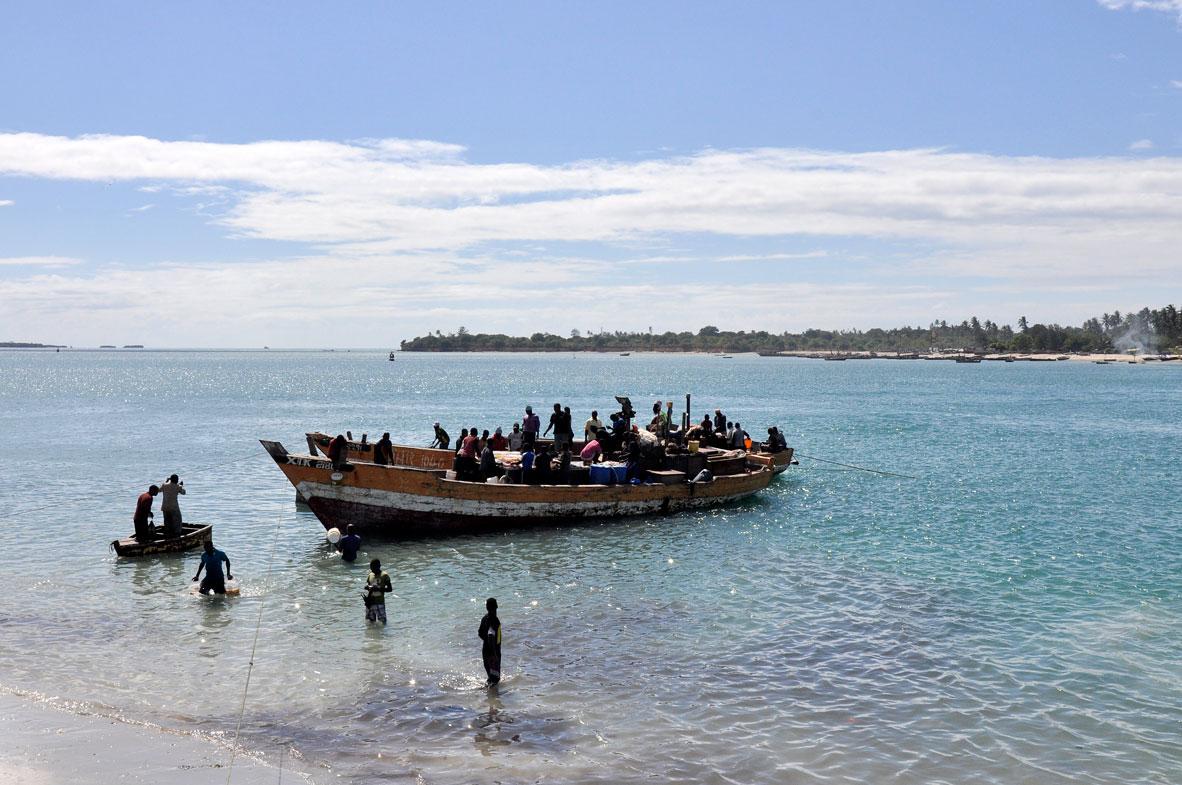 Balık avından dönmüş tekneler