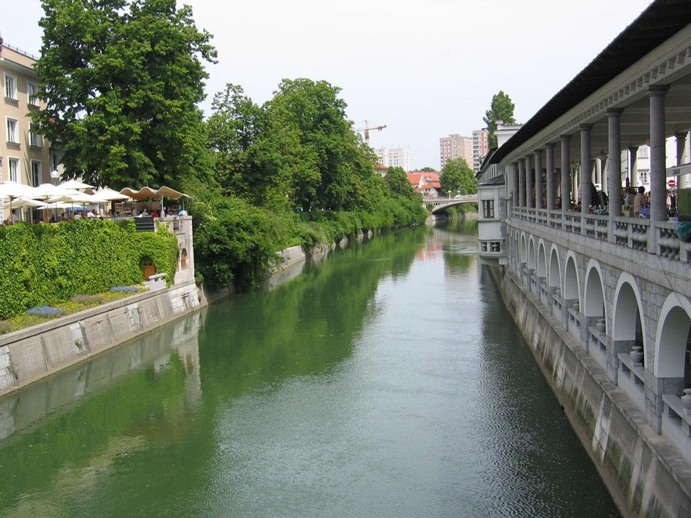 Ljubljanica Nehri kenti ikiye bölüyor