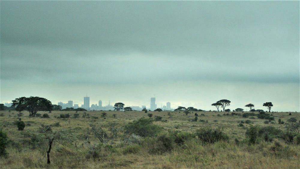 Nairobi Milli Parkı'ndan şehre bakış...