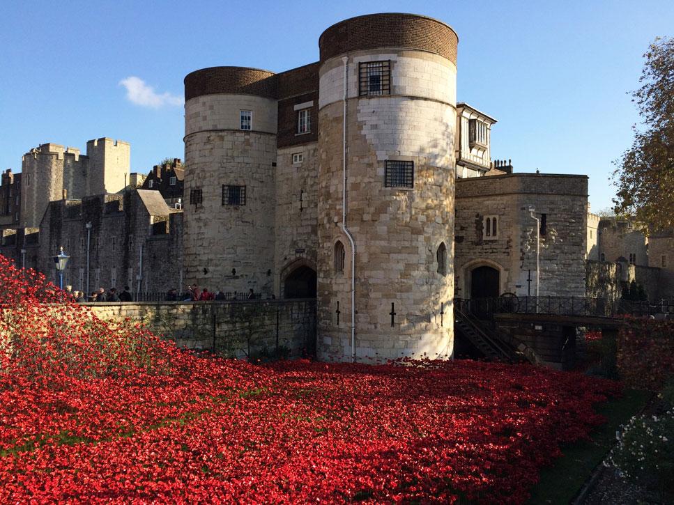 I. Dünya Savaşı'nın başlangıcının 100. yıldönümü vesileyle 2014'te Londra Kalesi'nin girişine serilen 888.246 kırmızı seramik gül, bu savaşta hayatını kaybeden İngiltere ve Kolonilerinden askerleri temsil ediyor