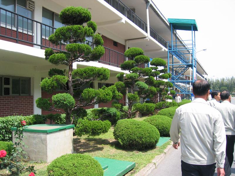Ziyaret ettiğimiz bir tesiste bahçe düzeni ve çalışanlar