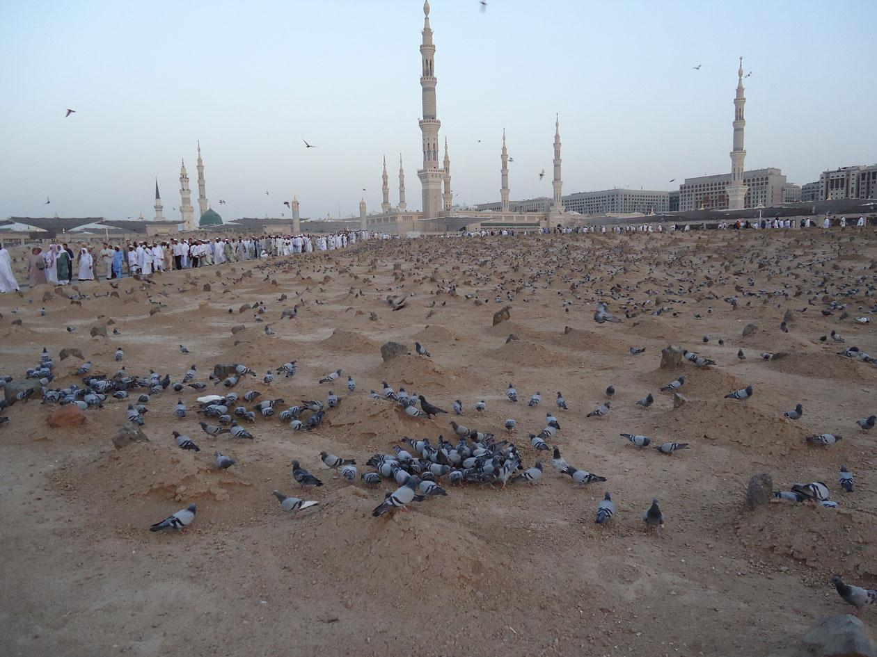 Cennetü-l-Bakî adlı mezar alanı